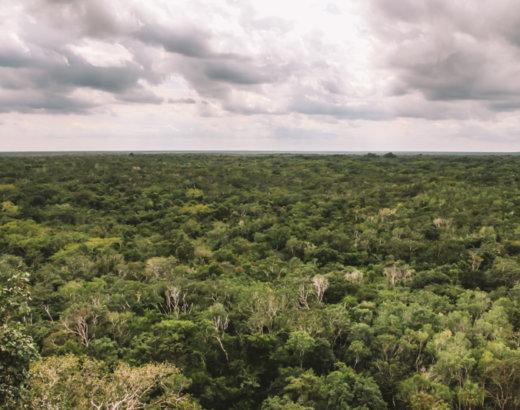 Cosa vedere a Cobà in Messico, la piramide Maya più alta del Quintana Roo