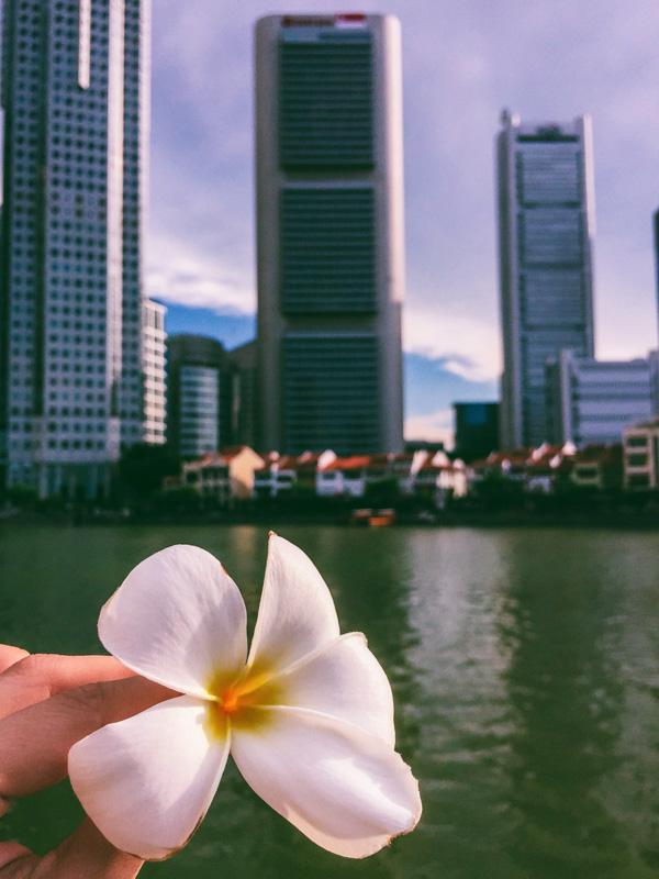 posto migliore per collegare a Singapore Morristown velocità datazione