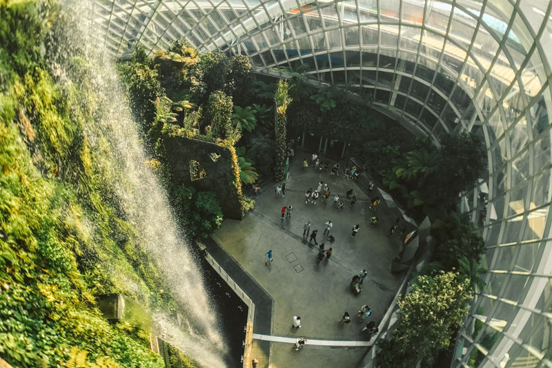 cosa vedere al gardens by the bay di singapore