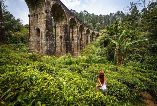 Le 5 cose più belle da fare in Sri Lanka